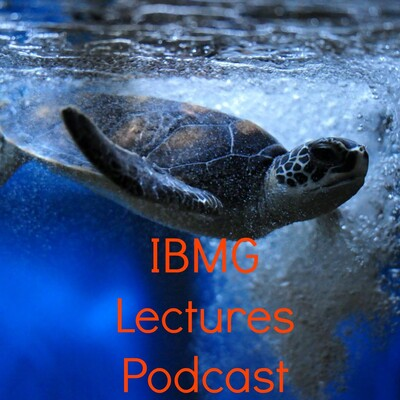 IBMG Lectures Podcast
