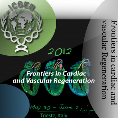 Frontiers in Cardiac and Vascular Regeneration