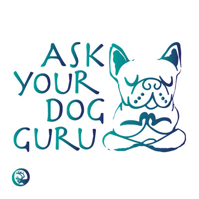 Ask Your Dog Guru