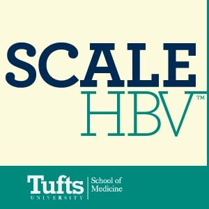 SCALE HBV