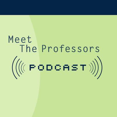 Meet the Professors