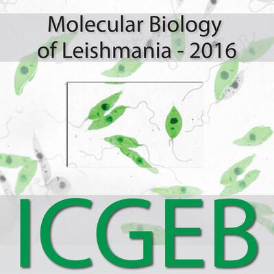 Molecular Biology of Leishmania 2016