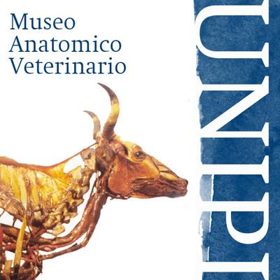 Museo Anatomico di Veterinaria