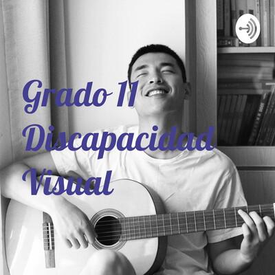 Grado 11 Discapacidad Visual