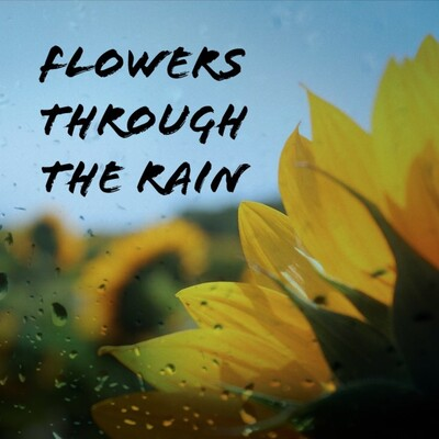 Flowers through the rain