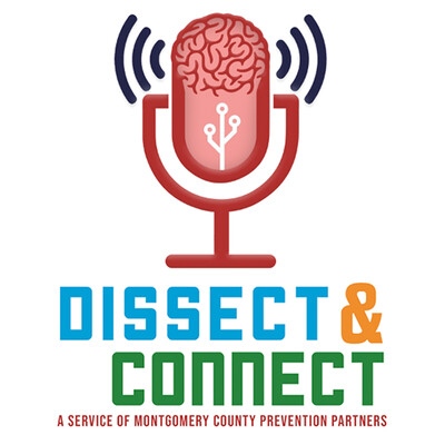 Dissect & Connect