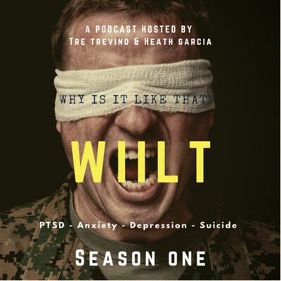 Why is it like that: stories of PTSD, anxiety, depression and suicide