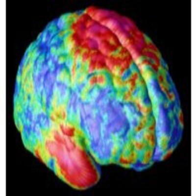 Cerebro por Francisco Mora
