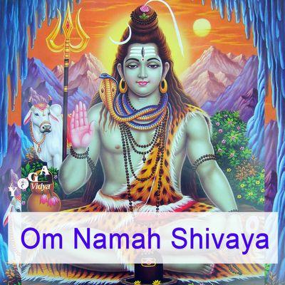 Om Namah Shivaya - Mantra Chanting and Kirtan