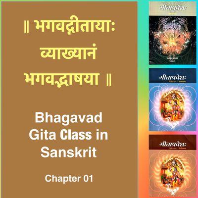 Bhagavad Gita Class (Ch1) in Sanskrit by Dr. K.N. Padmakumar (Samskrita Bharati)