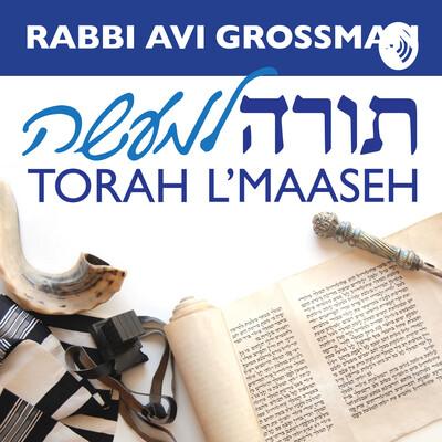 Rabbi Avi Grossman