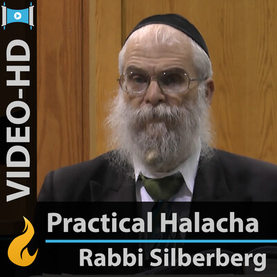 Everyday Halachah (Video-HD)