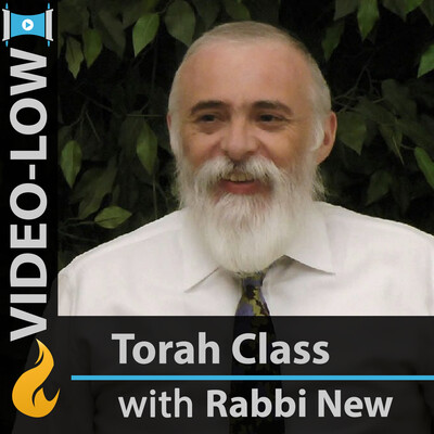 Commentaries on the Torah (Video-LOW)