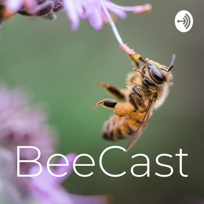 BeeCast