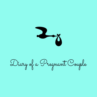 Diary of a Pregnant Couple