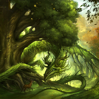 Forests of Gi