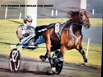 V75podden med Niclas & Mario