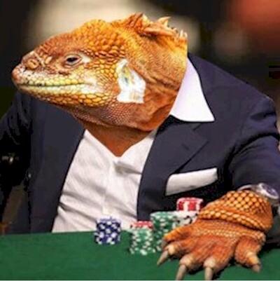 Michigan Poker Monster