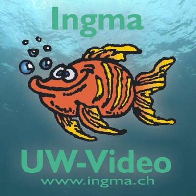 Ingma UW-Video Podcast