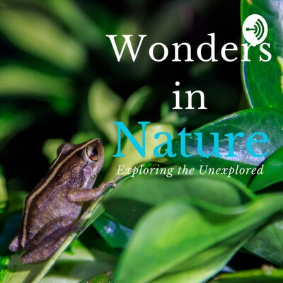 Wonders In Nature