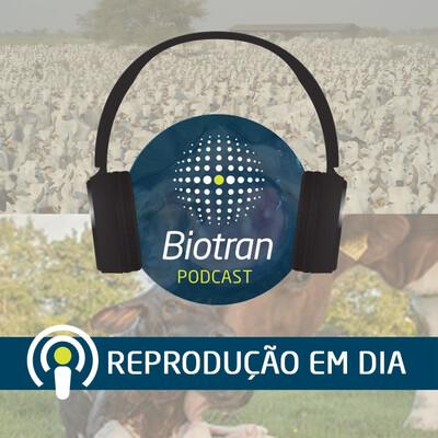 Biotran - Reprodução em dia