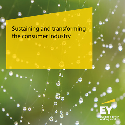 Sustaining and transforming the consumer industry
