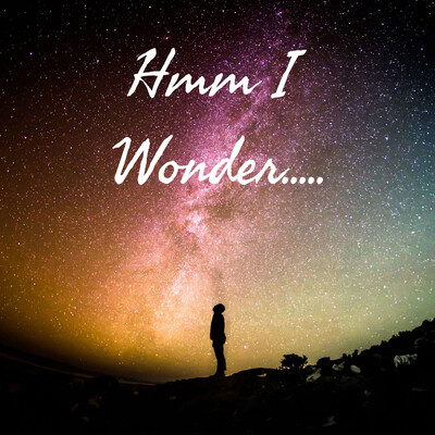Hmm I Wonder.....