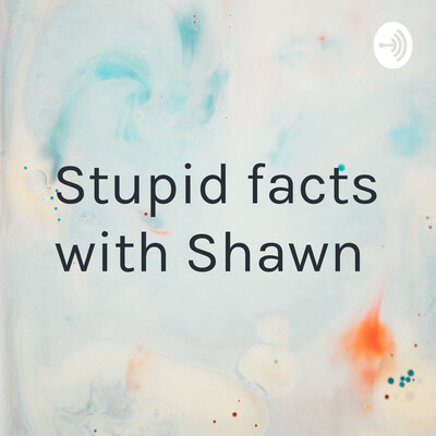 Stupid facts with Shawn