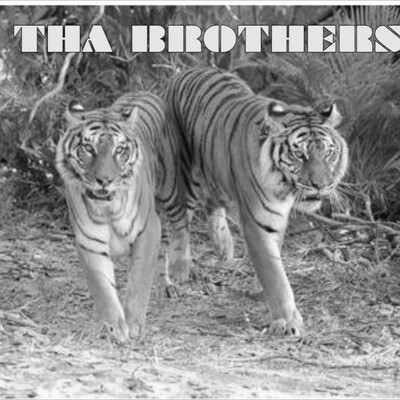 THA BROTHERS