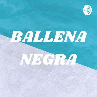 BALLENA NEGRA