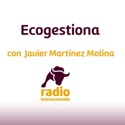 Ecogestiona
