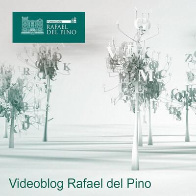 Videoblog Rafael del Pino