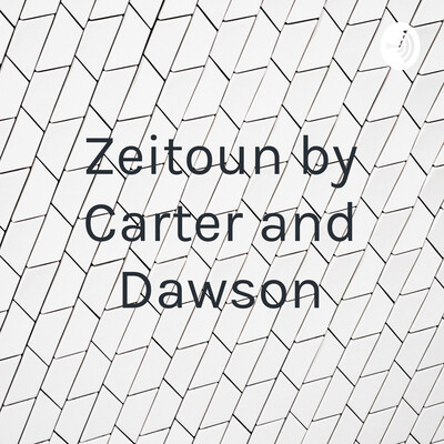 Zeitoun by Carter and Dawson