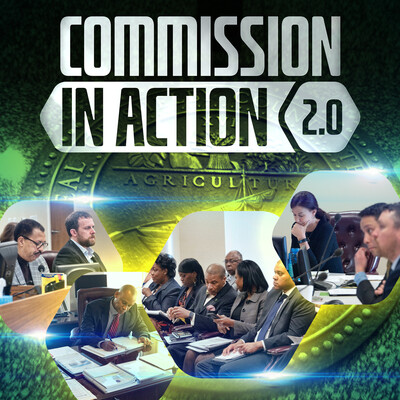 COMMISSION IN ACTION 2.0 powered by KUDZUKIAN