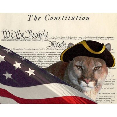 Constitutional Radio