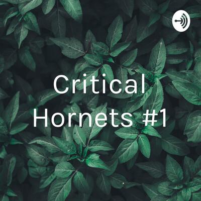 Critical Hornets #1