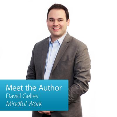 David Gelles: Meet the Author