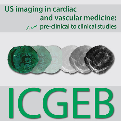 US Imaging in cardiac and vascular medicine: from pre-clinical to clinical studies