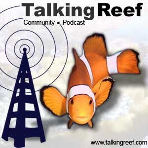 Talkingreef