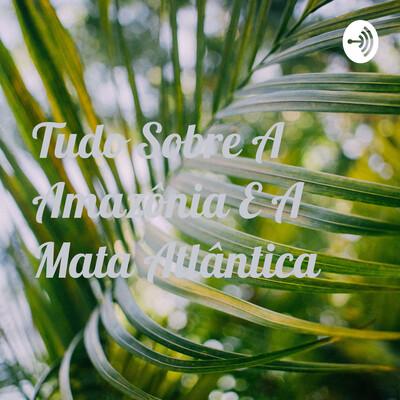 Tudo Sobre A Amazônia E A Mata Atlântica