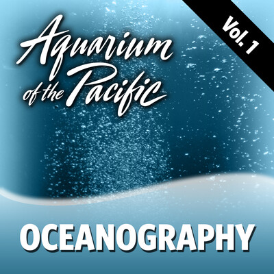 Oceanography Vol. 1
