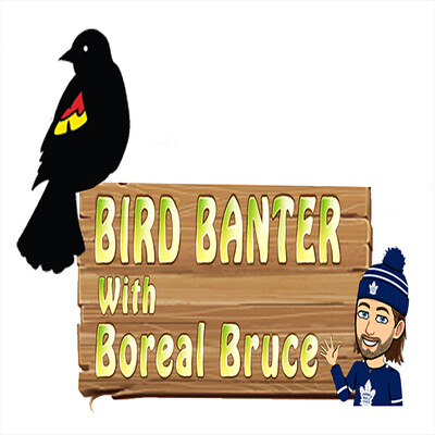 Bird Banter with Boreal Bruce