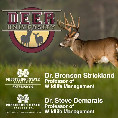 Deer University