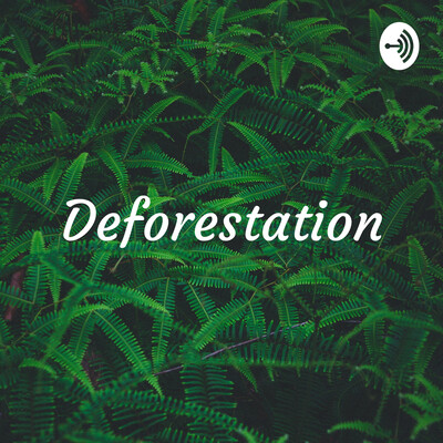 Deforestation: The Death of Mankind