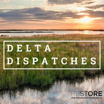 Delta Dispatches