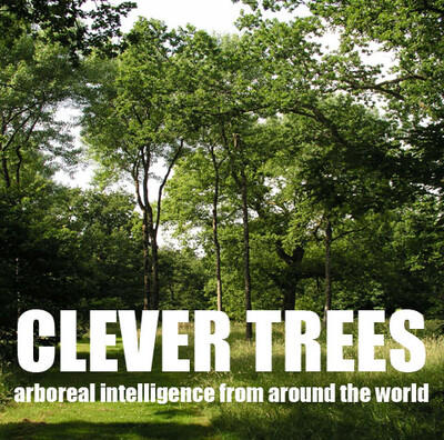 Clever Trees