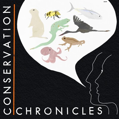 Conservation Chronicles