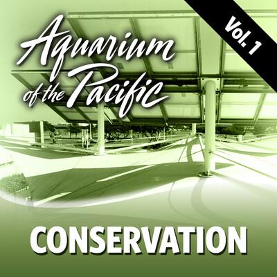 Conservation Vol. 1