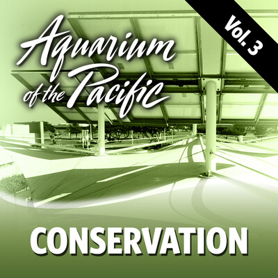 Conservation Vol. 3