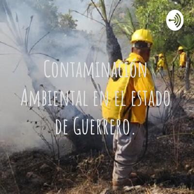 Contaminación Ambiental en el estado de Guerrero.